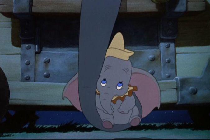 Dumbo_323